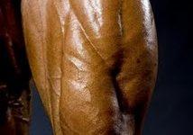Dicas Para Melhorar os Quadríceps!