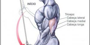 triceps puxador