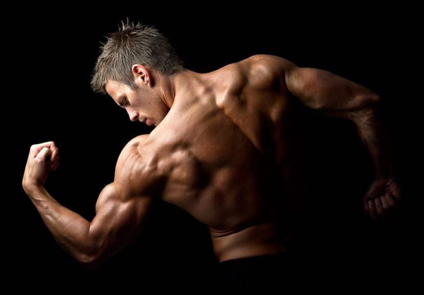 Zma para ganhar massa Muscular