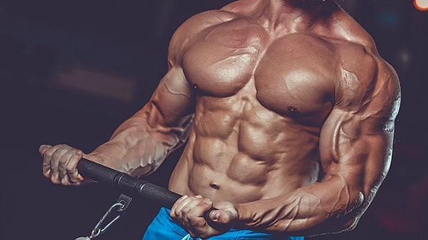 As 7 Regras Simples Para Construir Músculo Rápido