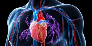 Como Baixar a Pressão Arterial