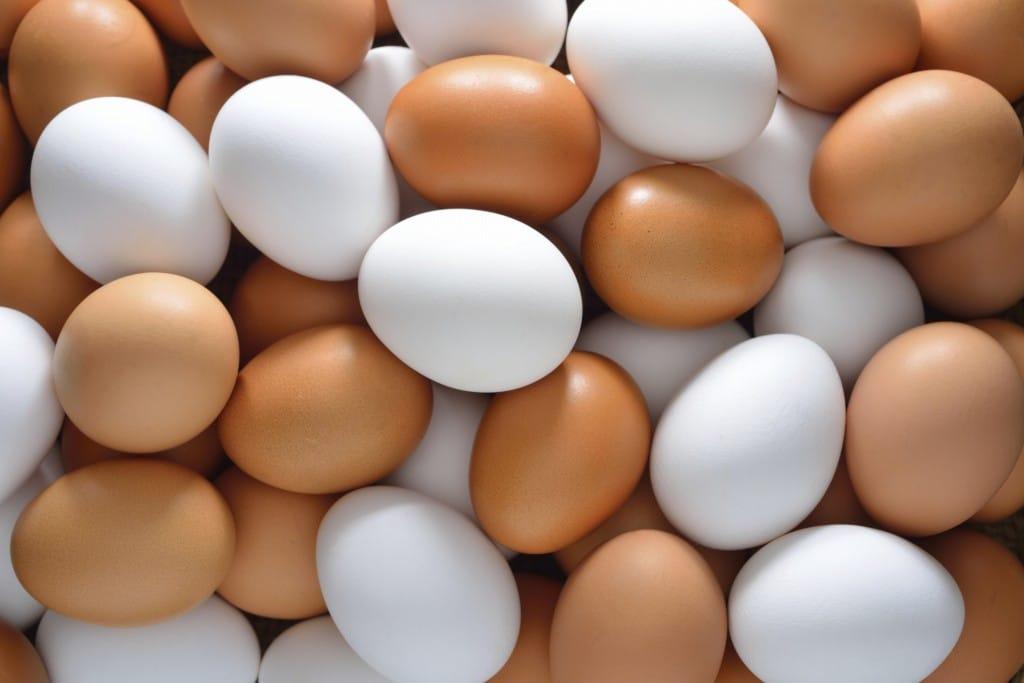 10 Benefícios do Ovo – Para que Serve e Propriedades do Ovo!
