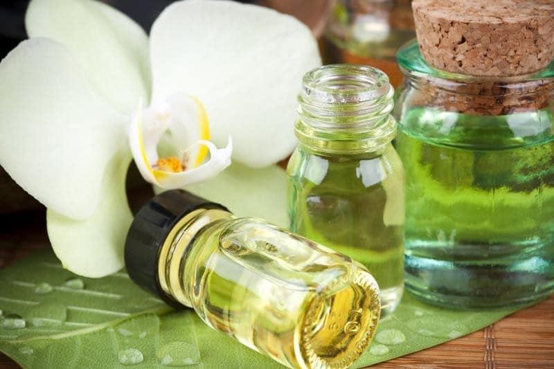 Beneficios do oleo de Gardenia