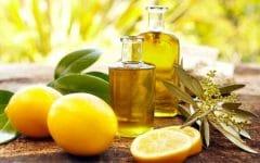 8 Benefícios do Óleo de Bergamota – Para que Serve e Propriedades do Óleo de Bergamota!