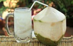 Os 18 Benefícios da Água de Coco Para Saúde