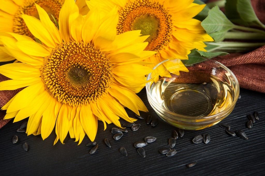 Os 12 Benefícios do Óleo de Girassol Para Saúde