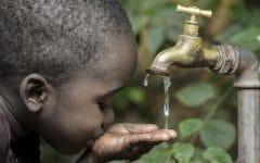 Cólera – O que é, Causas, Sintomas e Tratamentos!