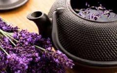 Os 18 Benefícios do Chá de Alfazema Para Saúde