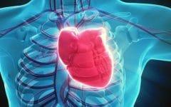 Insuficiência Cardíaca – O que é, Causas e Tratamentos