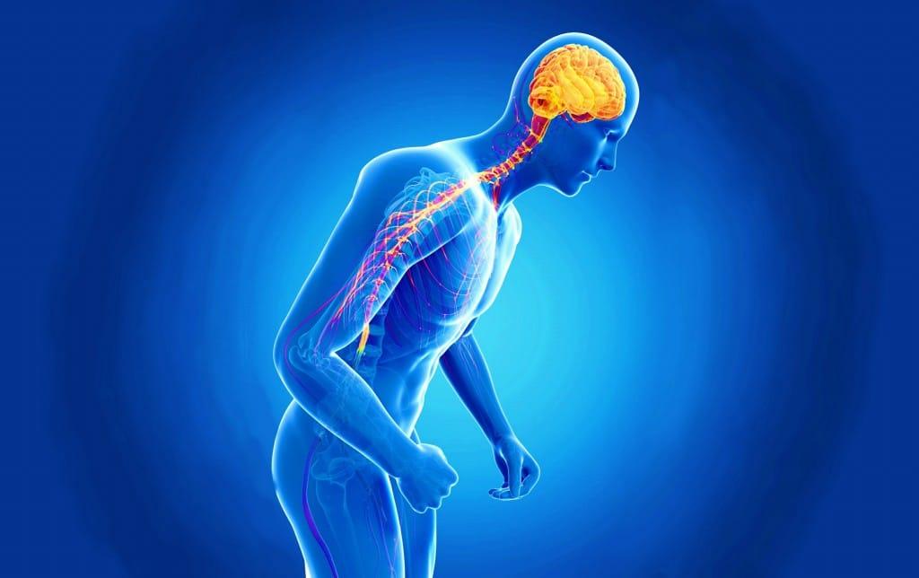Os 15 Principais Sintomas doMal de Parkinson