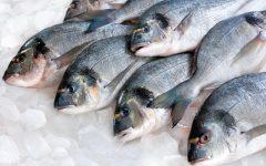 Os 12 Benefícios do Peixe Para Saúde