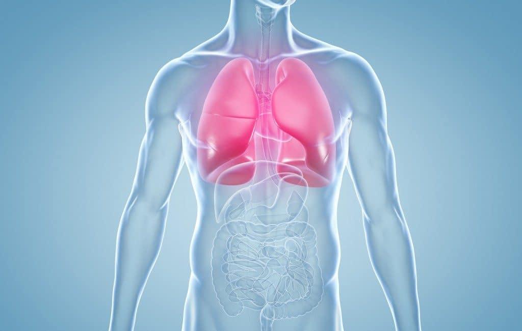 Principais Sintomas da Pneumonia