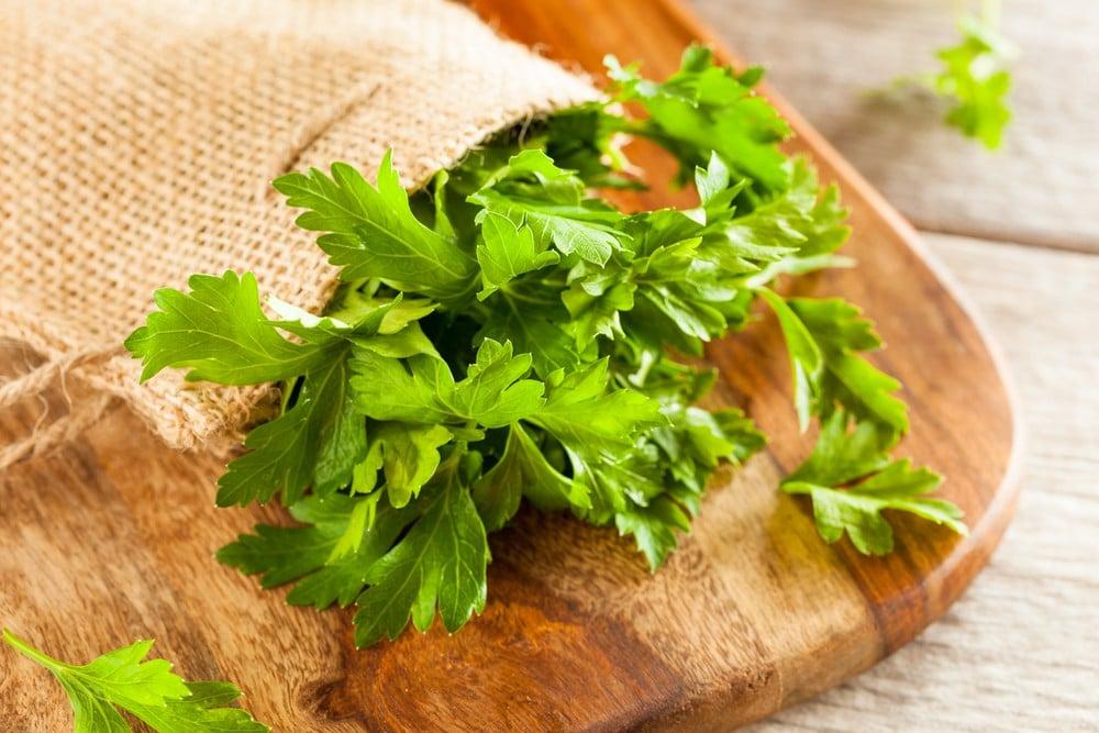 17 Benefícios da Salsa – Para que Serve e Propriedades da Salsa!