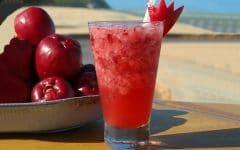 10 Benefícios do Suco de Jambo – Para que Serve e Propriedades do Suco de Jambo!