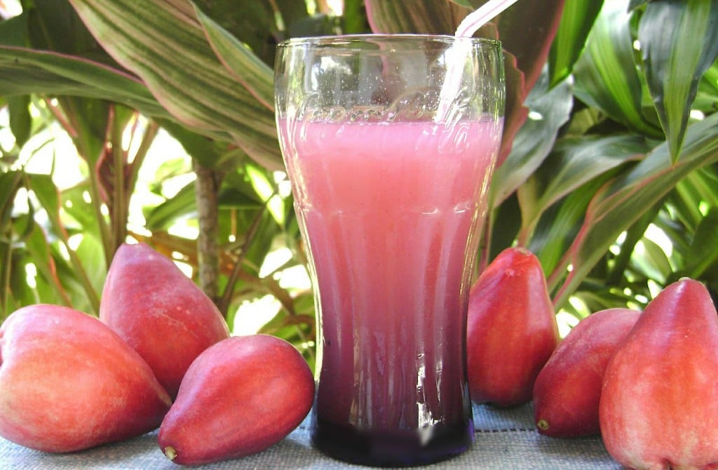 Benefícios do Suco de Jambo