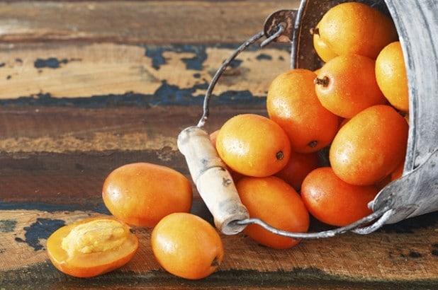 Os 10 Benefícios do Caroço de Cajá Para Saúde
