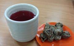 Os 10 Benefícios do Chá da Ameixa Para Saúde