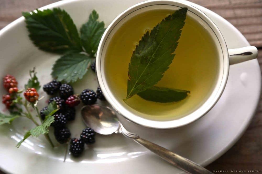 Os 15 Benefícios do Chá de Amora Para Saúde