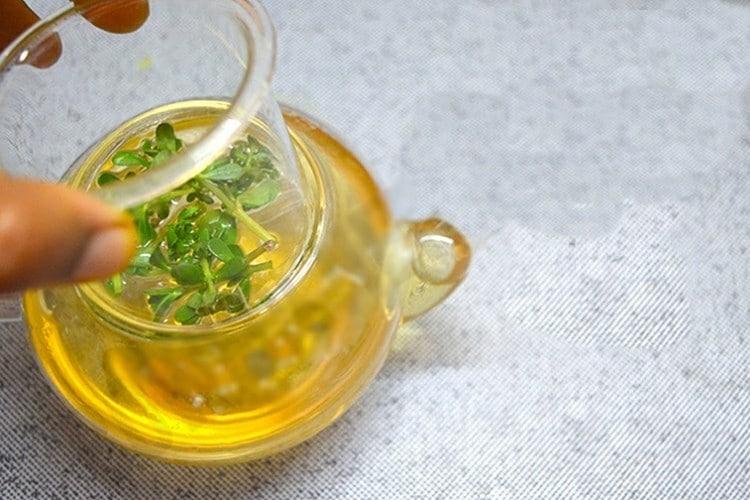 chá de brahmi
