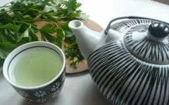 Os 16 Benefícios do Chá de Salsa Para Saúde