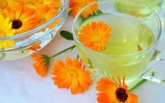 Os 17 Beneficios do Chá de Calêndula Para Saúde