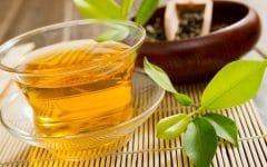 Os 10 Benefícios do Chá de Carqueja Para Saúde
