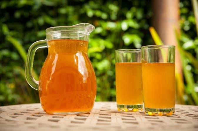 Os 10 Benefícios do Chá Kombucha Para Saúde