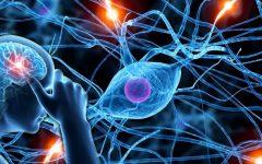 Doença de Danon – O que é, Causas, Sintomas e Tratamentos
