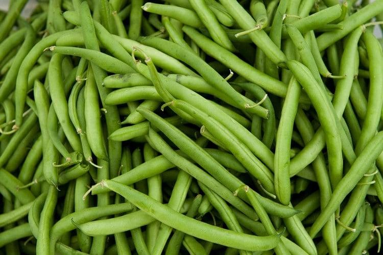 Beneficios do Feijao Verde