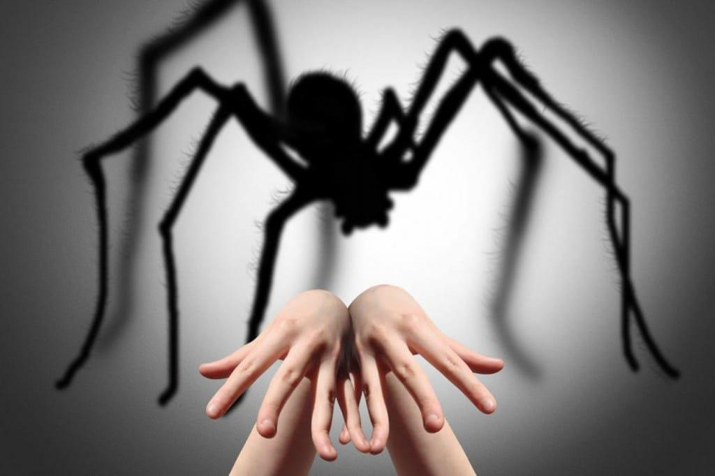 Os 20 Principais Sintomasde Fobia