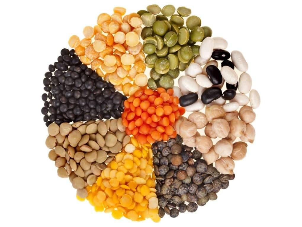 12 Benefícios da Lentilha – Para que Serve e Propriedades da Lentilha!