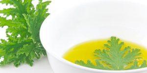 oleo de citronela 1