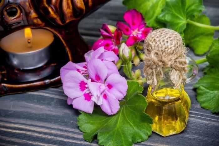 Os 11 Benefícios do Óleo de Gerânio Para Saúde