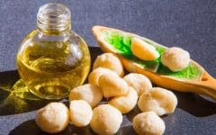 Os 10 Benefícios do Óleo de Macadâmia Para Saúde