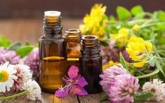 Os 10 Benefícios do Óleo de Neroli Para Saúde