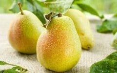 15 Benefícios da Pera – Para que Serve e Propriedades da Pera!