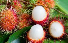 Os 12 Benefícios do Rambutan Para Saúde
