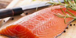 salmão salmão