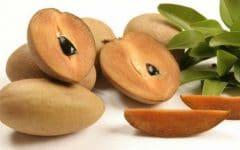 15 Benefícios do Sapoti – Para que Serve e Propriedades do Sapoti!