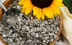 Os 17 Benefícios da Semente de Girassol Para Saúde