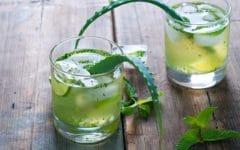 10 Benefícios do Suco de Aloe Vera – Para que Serve e Propriedades do Suco de Aloe Vera!