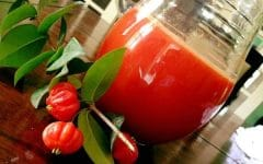 Os 15 Benefícios do Suco de Pitanga Para Saúde