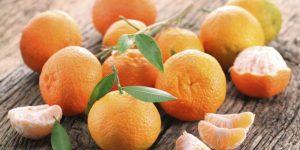 suco de tangerina suco de tangerina