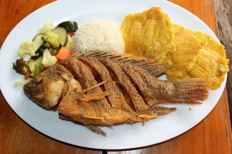 Beneficios da Tilapia