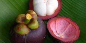 vitamina de mangostão 1