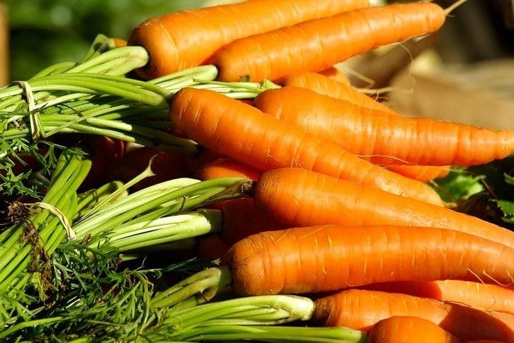 beneficios da cenoura