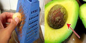 caroço de abacate