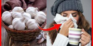 como usar o alho para acabar com o resfriado