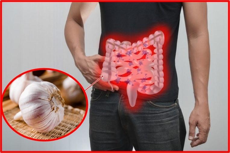 eliminar parasitas intestinais
