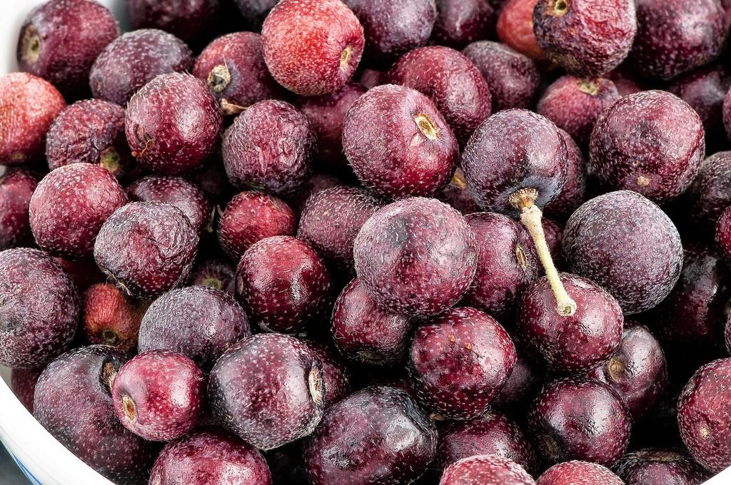 Os 15 Benefícios da Fruta Falsa Para Saúde